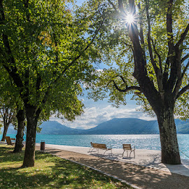 At lake Annecy by Tzvika Stein - City,  Street & Park  City Parks ( annecy, benches, park, lake, france, sun,  )