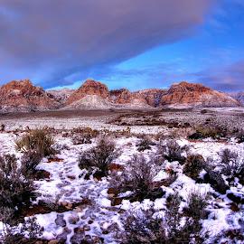 by Martin Dunaway - Landscapes Deserts