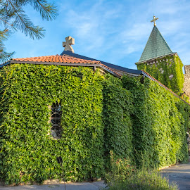 Orthodox church Ružica by Ranko Krneta - Buildings & Architecture Places of Worship ( moment, green leaf, sky line, pictures, architecture, photography, photooftheday, religion, all_shots, ortodox, pics, nature, fortress, capture, nikon, church, faith, green leaves, belgrade, green, beautiful, art, kalemegdan, pic, extraordinary, picture, grace, picoftheday, color, d7100, castle, eastern, garden, cross )
