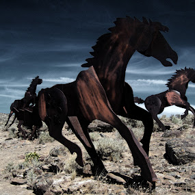 by Paul Griffin - Landscapes Deserts ( wild, horses, columbia, horse, monument, river )