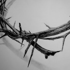 Crown of Thorns by Syella Herwanto - Drawing All Drawing ( pencil, black and white, crown, art, crown of thorns, drawing, artwork )