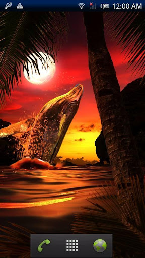Whale Sunset