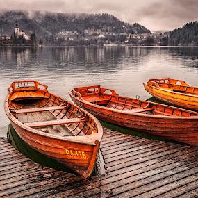 Lake Bled by Dobrinovphotography Dobrinov - Transportation Boats ( reflection, church, gorenjska, island lake, lake, beauty in nature, landscape, island, autumn, no people, slovenia, bled, santa maria church, cloud )