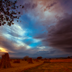 Greass field by Cristobal Garciaferro Rubio - Landscapes Prairies, Meadows & Fields ( clouds, grass field, grass, sunset )