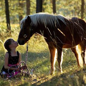 love bugs by Giselle Pierce - Babies & Children Children Candids ( field, miniature horse, child, little girl, girl, grass, dress, kd, horse, trees )