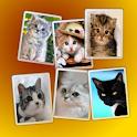 Cat Widget Free icon