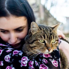 by Gabriela Gabriella - Animals - Cats Portraits