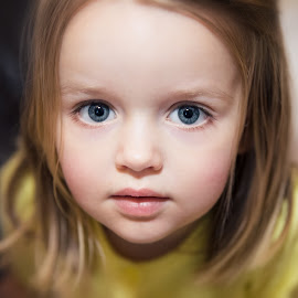 Sophie by Dorota Romik - Babies & Children Toddlers ( blue eyes, toddler )