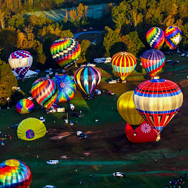 BalloonFest by Carol Plummer - News & Events Entertainment ( hot air balloon, event, landscape, balloons, entertainment,  )