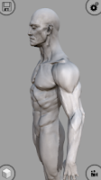 Screenshot of MARA3D Human Anatomy Lite