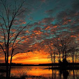 Sunrise surprise by Angela Everett - Landscapes Sunsets & Sunrises ( tree, color, hendersonville, tennessee, sunrise )