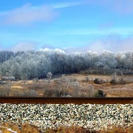 Trackside by DeDe PalmerWells - Landscapes Prairies, Meadows & Fields ( field, winter, meadow, frost, frozen,  )