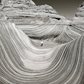The Wave in Utah in Black and White by Tyrell Heaton - Black & White Landscapes ( the wave in utah in black and white )