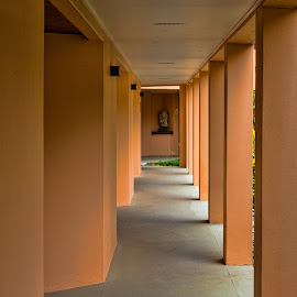 pathway by Vibeke Friis - Buildings & Architecture Architectural Detail ( structure, apricot, pillars,  )