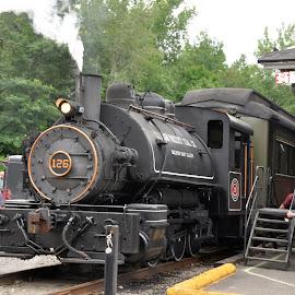 Smokin' by Janice Burnett - Transportation Trains ( steam locomotive, steam engine, steam train, scenic train ride, nostalgia )