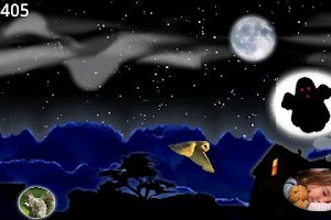Screenshot of Magic Owl