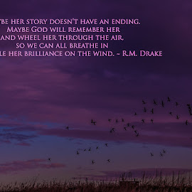 Her Story Won't End by Gretchen Steele - Typography Captioned Photos