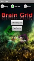 Screenshot of Brain Grid