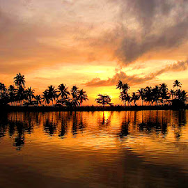 Sunset lake by Shameer Kamarudheen - Landscapes Sunsets & Sunrises ( coconut trees, sunset, lake, orange sky )
