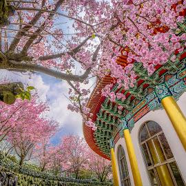 city park by Gary Lu - City,  Street & Park  City Parks ( gary lu, city park )
