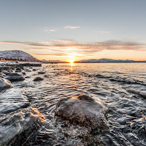 Cold and iced by Benny Høynes - Nature Up Close Rock & Stone ( ice, sea, lake, rocks, norway )