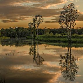 Dusk at river by Vanja Vidaković - Landscapes Sunsets & Sunrises ( vukovar, sunset, zalazak, sumrak, croatia, dusk, hrvatska )
