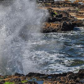 Waves at Ocean Beach by Ken McDougal - Nature Up Close Water ( beaches, oregon coast waves, ocean waves, ocean, huge waves )