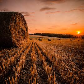Stubble field by Marek Kargier - Landscapes Sunsets & Sunrises
