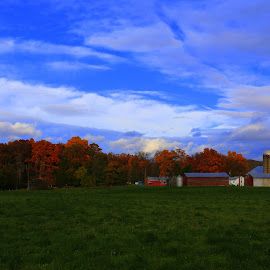 Picture Perfect Farm in PA by Jason Confer - Landscapes Prairies, Meadows & Fields ( field, farm, farmland, fall, color, colorful, nature,  )