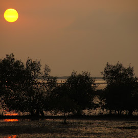 Probolinggo sunset by Gunawan Abdul Basith - Landscapes Sunsets & Sunrises ( sunset, sunsets, mangrove )