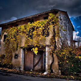 House in Autumn by Luigi Esposito - Buildings & Architecture Homes ( leafs, autumn, architecture, rocks )