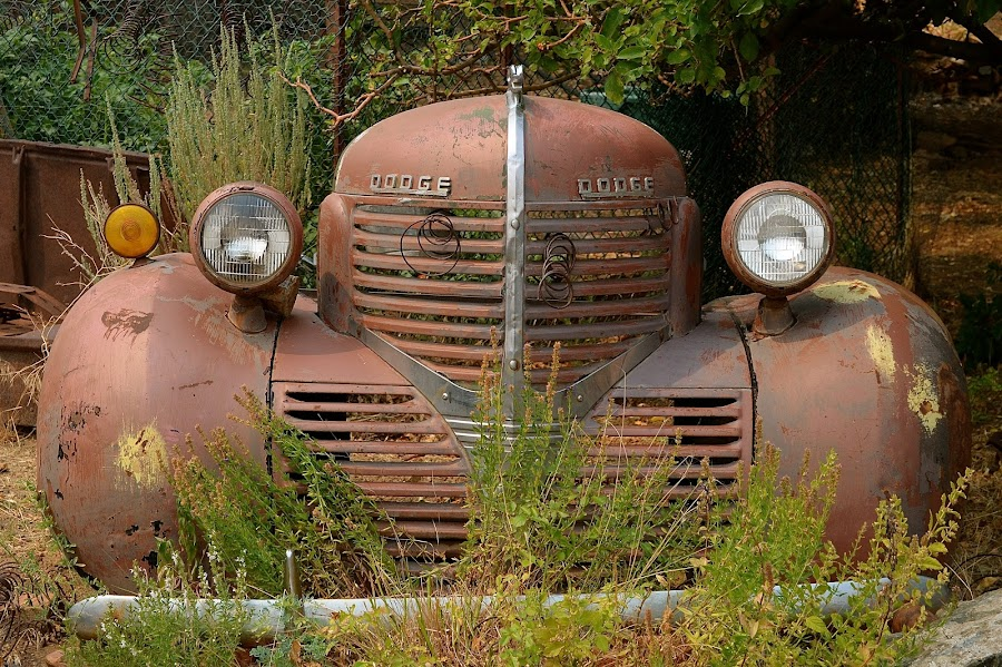 Guts, Glory, Ram by Ed Hanson - Artistic Objects Antiques ( old, truck, front, rust, end )