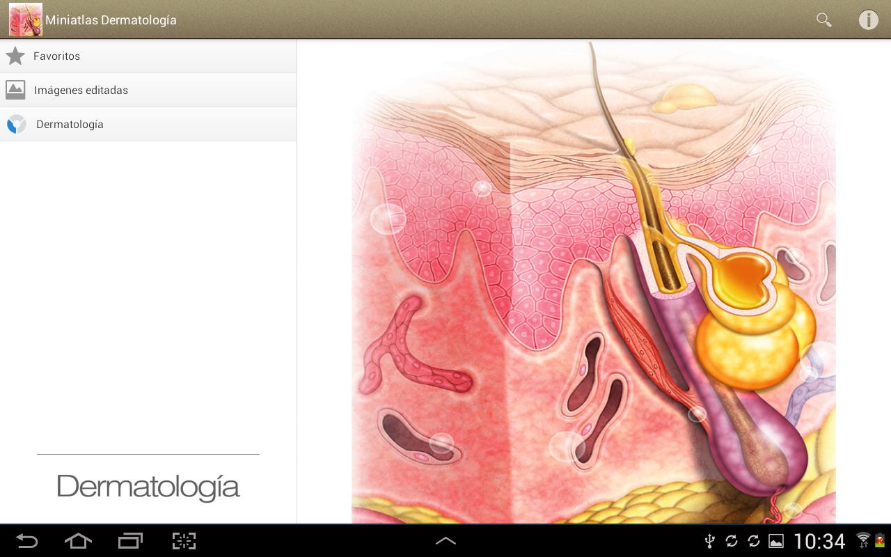 Atlas de dermatologia fotos 3