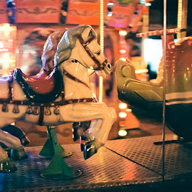 Amusement Horse by Niculescu Radu - City,  Street & Park  Amusement Parks ( film, canon, macro, iso, amusement park, park, horse, kodak, long exposure, night )
