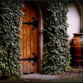 Secret Garden  by Dale Carney - Buildings & Architecture Other Exteriors ( doors, gardens, ivy,  )
