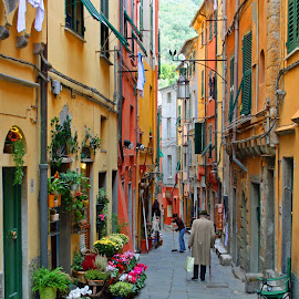 Cinque Terra by Natalie Woodhead - City,  Street & Park  Street Scenes ( colourful, streetscape, buildings, , colorful, mood factory, vibrant, happiness, January, moods, emotions, inspiration )