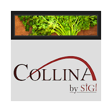 Collina by Sigi