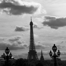 Looking peacefully pretty in the early morning light... by Nickoleta Antonopoulos Nguyen - City,  Street & Park  Vistas ( eiffel tower, paris, sunrise in paris, black and white, peace, Urban, City, Lifestyle )