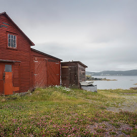 Red Shed at Twillingate by David Stone - Buildings & Architecture Other Exteriors ( water, shed, red, newfoundland, barn, sky with clouds, seascape, landscape, boat, twillingate, coast )