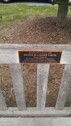 Esther Blackmer Voiles Memorial Bench