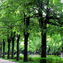 cubbon park, banglore by Nithi Nithin - Nature Up Close Gardens & Produce ( tree, park, nature, green, peace, filter,  )