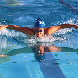 The Butterfly Effect by Lynn Rydel - Sports & Fitness Swimming ( butterfly, swimming pool, swim team, race, swimming, competition )