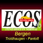 Norvegia - Fjordi 2 - Bergen icon
