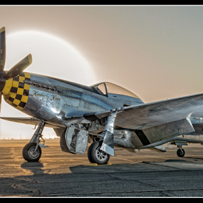 Capital Airshow 2014 by Dirk Dreyer - Transportation Airplanes ( sacramento, gh4, wwii, airplane, micro four thirds, mirrorless, m43, plane, p-51, lumix, m43ftw, aircraft, sunrise, panasonic, airshow )