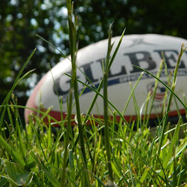 Cool shot, but I'm still missing rugby  by Matt Houseman - Novices Only Sports ( rugby, photography, spring, sun )