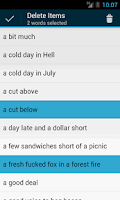 Screenshot of English Idioms Dictionary
