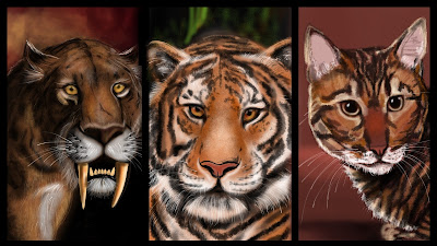 evolution of tigers Facts and information about tiger taxonomy and evolution tiger evolution description.