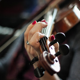 by Zac Anderson - Artistic Objects Musical Instruments ( violin, violin player, strings )