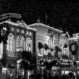 Main Street USA Disney World by Chris Campbell Stacy Campbell - City,  Street & Park  Amusement Parks