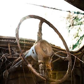 Old Wheel by Niculescu Radu - Transportation Automobiles ( car, warm, wheel, digital, photography )